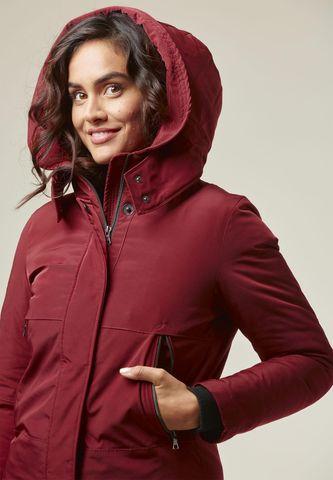 burgundy hooded jacket Angelico